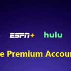 Disney Plus ESPSN + Hulu Hotstar Accounts