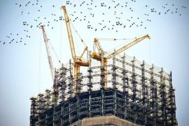 How Construction Field Management Can Reduce the Chances of Injuries in Construction