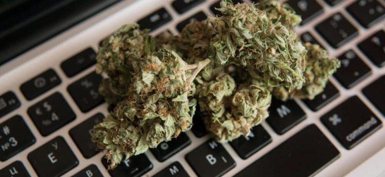 Online Dispensaries